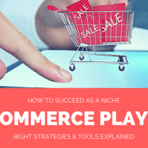 How to succeed in niche eCommerce player