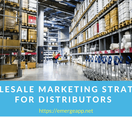 Wholesale Marketing Strategy