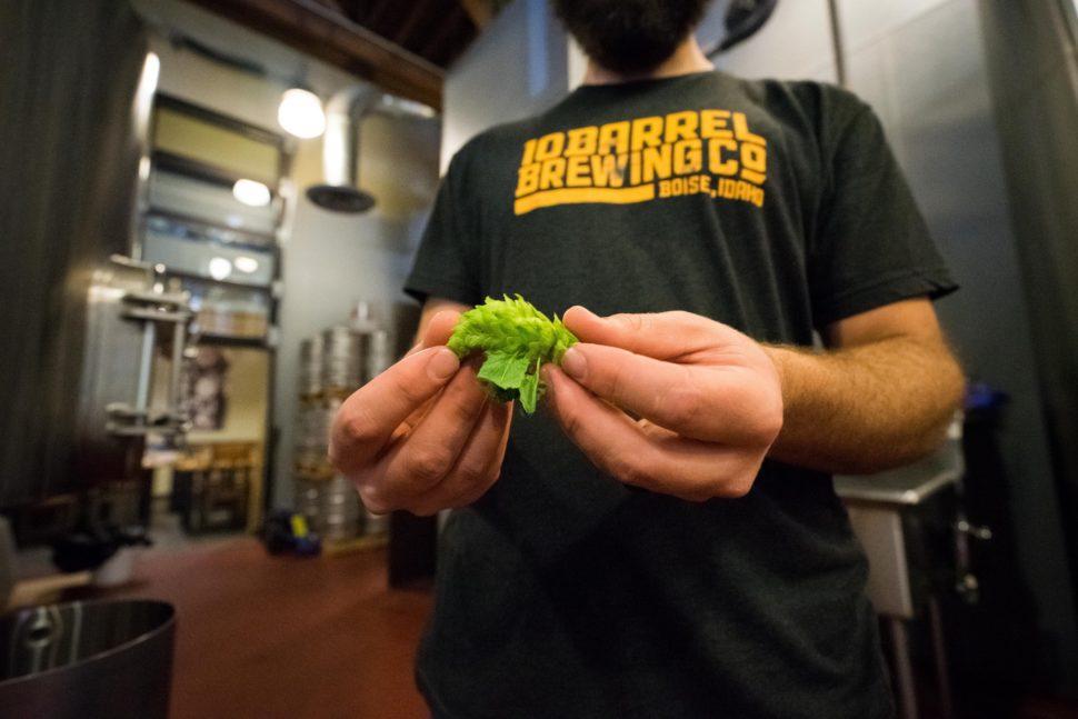 中小企业ERP—精酿啤酒厂的库存管理